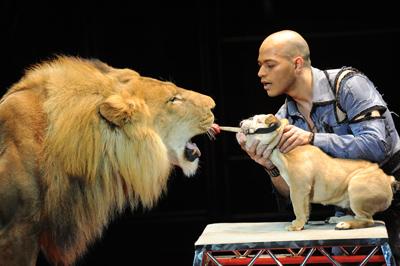 Дрессировщик тигров и львов Хамада Кута